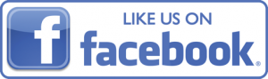Facebook Icon for web